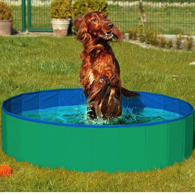 Luxe piscine plastique dur pour chien piscine for Piscine pour chien pas cher