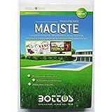 Maciste zaden voor tapijtturf - ideaal voor zone droge gebieden - 1 kg