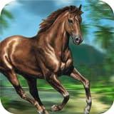 Jungle Horse Run 2016 - Horse Racing jeu