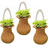 LIVEONCE Plastic Planter Set ,brown ,Large, 3 Pieces