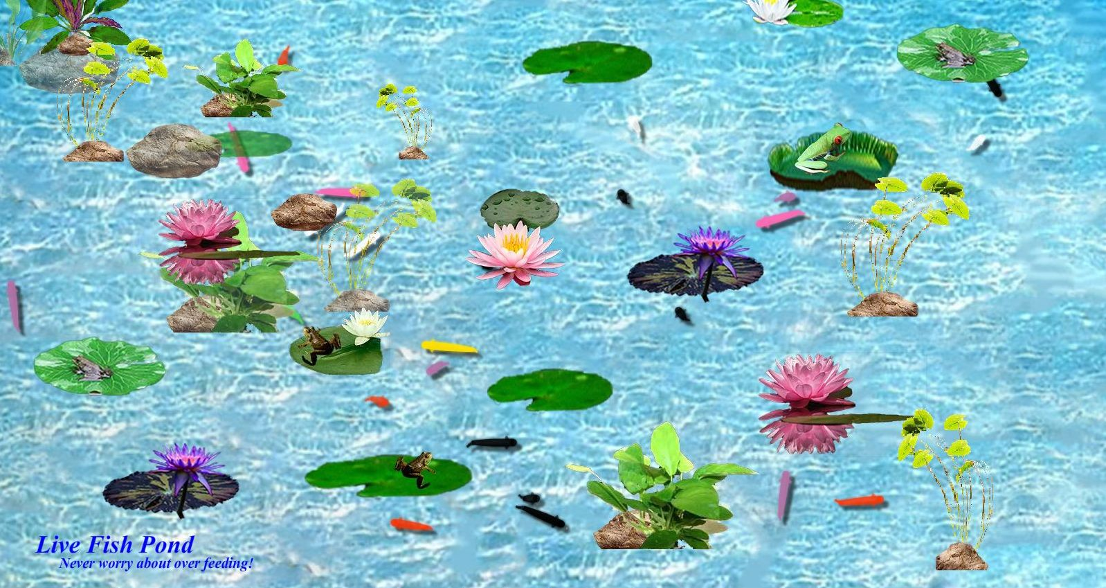 jeu-de-bassin-poissons-interactifs-telechargement