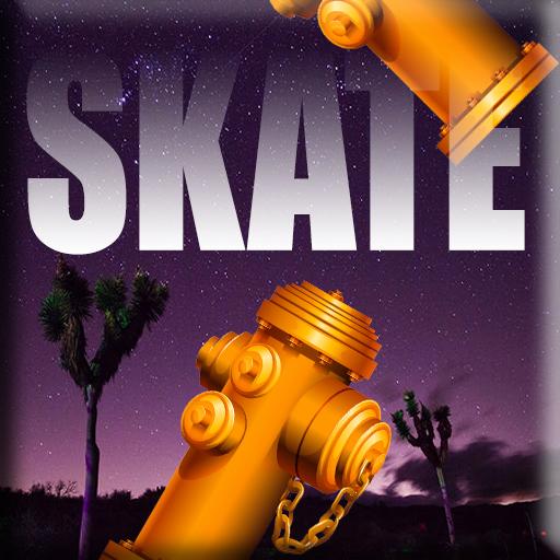 Skateboarding Skateboardy Bird Adventure -