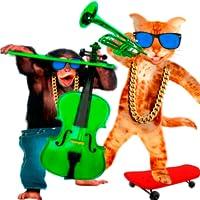 Talking Monkey vs Singing Cat