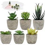 LITLANDSTAR Petites Plantes succulentes artificielles en Pot, Lot de 6 Plantes succulentes artificielles Mini Plantes artific