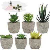 LITLANDSTAR Petites Plantes succulentes artificielles en Pot, Lot de 6 Plantes succulentes artificielles Mini Plantes…
