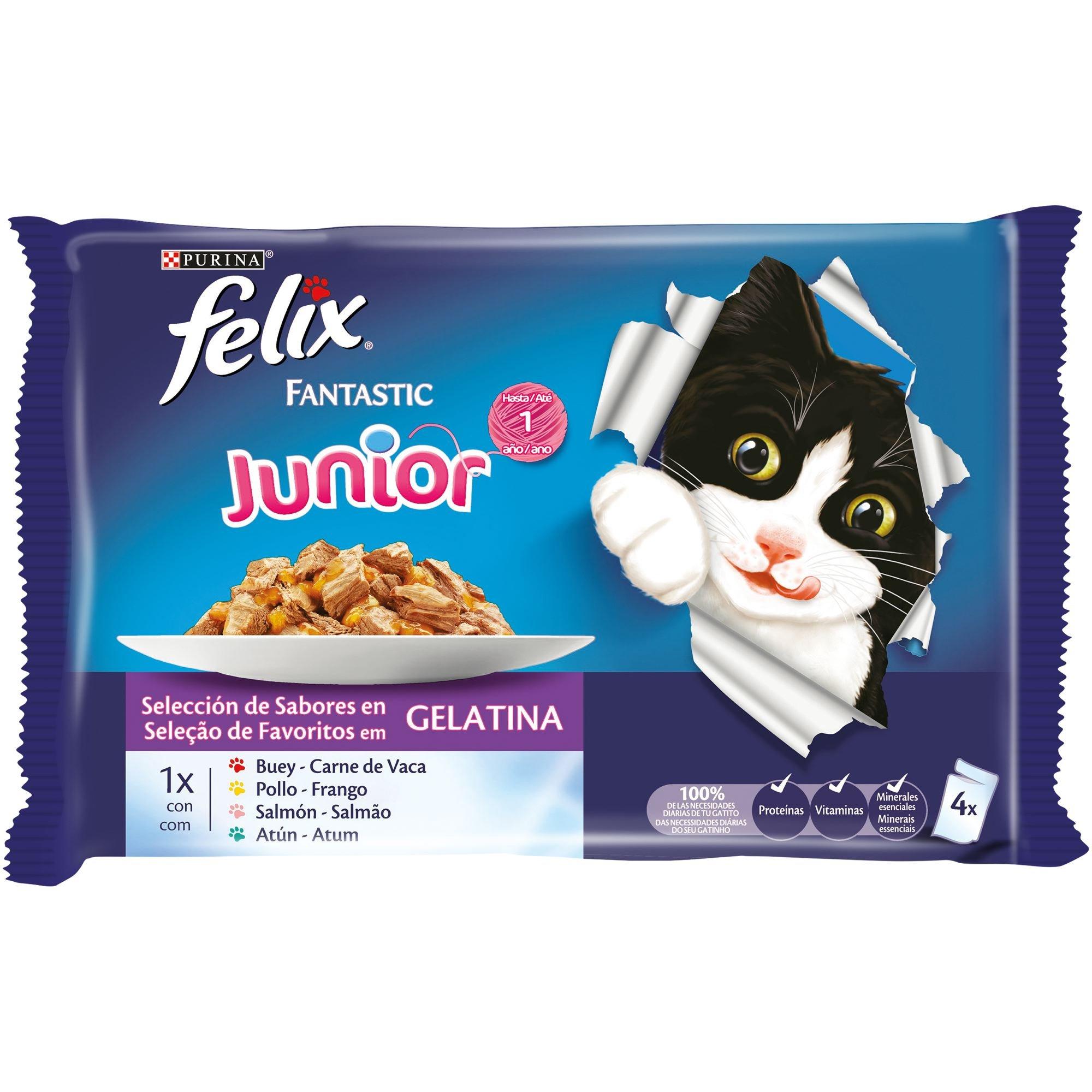 Purina Felix Fantastic comida para gato Junior Selecciones Favoritas 10 x [4 x 100 g]