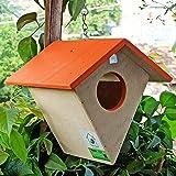 PetNest Diamond HG2 Hanging Bird House, Wood (17 cm x 17 cm x 15 cm) (Saffron)