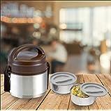 Asian Plastowares Stainless Steel Trendy Lunch Box, Set of 2, Brown