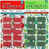 Lazy Gardener Plant Food Sticks Trial Pack 1 GreenStix + 1 BloomStix (Essential Nutrition Bloom-Booster)