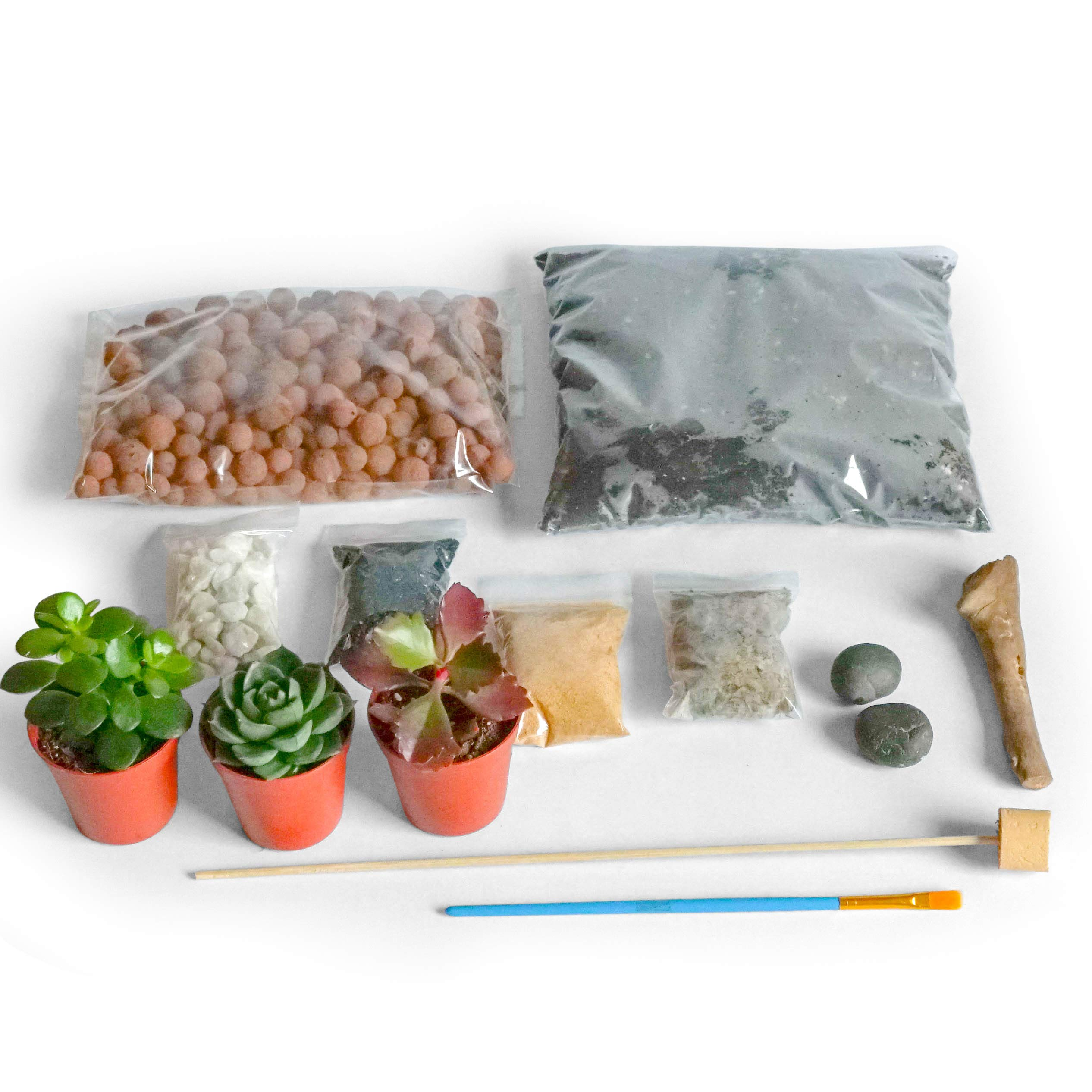 Concretelab Co Terrarium Diy Kit For Succulents And Cacti Plants With Step By Step Guide Includes Soil Charcoal Pebbles Sphagnum Moss Sand Driftwood