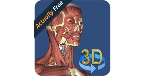 3D Human anatomy: Amazon.de: Apps für Android