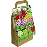 GreenBrokers All Summer Long Flowering (50 Bulbs)- Big Value Pack-Mixed Colours