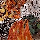 180 Pcs 6 Styles Assortiment De Plumes Artisanales,Mwoot Plumes De Poulet Naturel pour DIY Boucle D'oreille Ailes Dream Catch