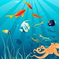 Under Water Deep Sea Explorer
