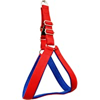 Sollar's 1.5 Inch Width Chest Size 24-36 Inches Soft Padded Dog Harness (Red and Blue, Extra Large)
