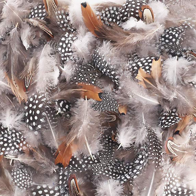 LEBENSWERT Naturfedern Federn Hühnerfeder 300 Stücke DIY Deko Federn 3 Verschiedene Federn Basteln für Traumfänger…