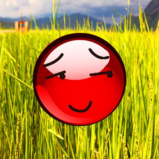Red Ball Abenteuer