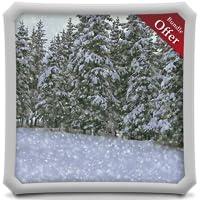 Heavy Snowfall HD - FREE Winter Wallpaper & Themes