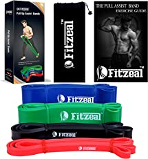 [2018 Upgraded] Fitzeal Pull Up Assistance Resistance Band wtih Free Carry Bag and Physical Workout Guide – Extra Durable Top Rated Elastic Workout Home Gym Pull-Up Assist Bands - Mobility Band