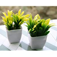 Artificial Plants Bonsai with Plastic Pot (Green And White, Set Of 2 )