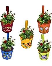 CINAGRO - Set of 5 - Designer Hand Painted Railing Metal Planter, Plant Holder, Balcony, Home Garden - (Maroon, Orange, Blue, Yellow, Lemon)