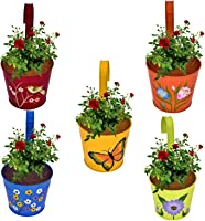 Cinagro - Set Of 5 - Hand Painted Railing Metal Planter, Plant Holder - (Maroon, Orange, Blue, Yellow, Lemon)