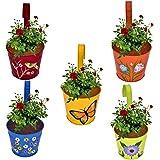 CINAGRO - Set of 5 - Designer Hand Painted Railing Metal Planter, Plant Holder, Balcony, Home Garden - (Maroon, Orange, Blue,