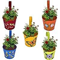 CINAGRO - Set of 5 - Designer Hand Painted Railing Metal Planter, Plant Holder, Balcony, Home Garden - (Maroon, Orange…