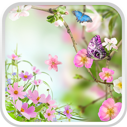 Flowers Live Wallpaper: Amazon.co.uk: Appstore For Android