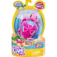 Little Live Pets 26204 Turtle-Styles May Vary