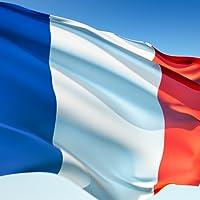 Französische Verben Pro