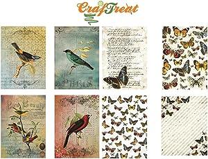CrafTreat Decoupage A4 Paper - Birds & Butterfly 8/Pkg