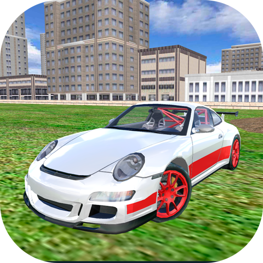 Racing Car Driving Simulator (Racing Speed For 3d Need)