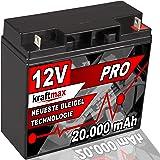 Batterie 12v 24ah 12n24 3a Blei Säure Yuasa 52401 Ohne Säurepack Auto