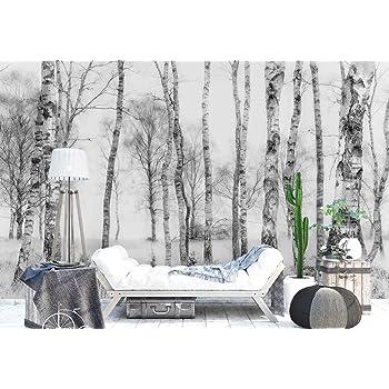 papier peint mural troncs d 39 arbres de bouleau des bois th me for t et arbres xl 368cm x. Black Bedroom Furniture Sets. Home Design Ideas