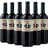 Toscana IGT Sassoalloro Jacopo Biondi Santi 2018 6 bottiglie da 0,75 L