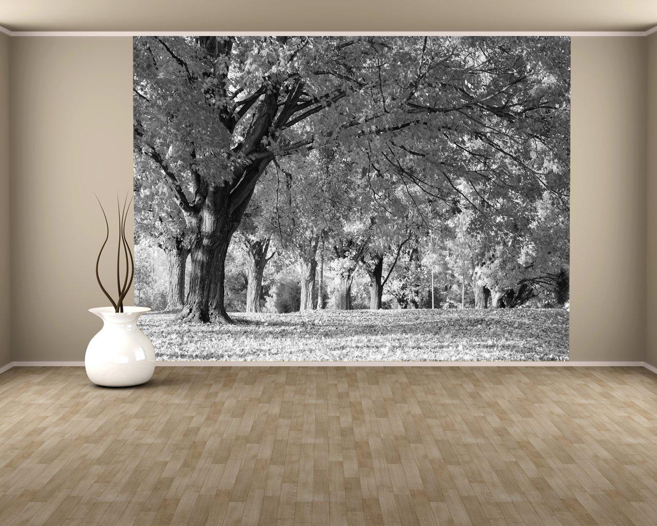 Fototapete schwarz weiß wald  selbstklebende Fototapete