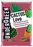 Undergreen Cactus Love, Erde für Kakteen und Co., Bio, Kultursubstrat, 2,5 L, Braun