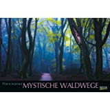 Mystische Waldwege 215519 2019: Großer Foto-Wandkalender über faszinierenden Pfade im Wald. Edler schwarzer Hintergrund und Foliendeckblatt. Panorama Querformat: 58x39 cm.