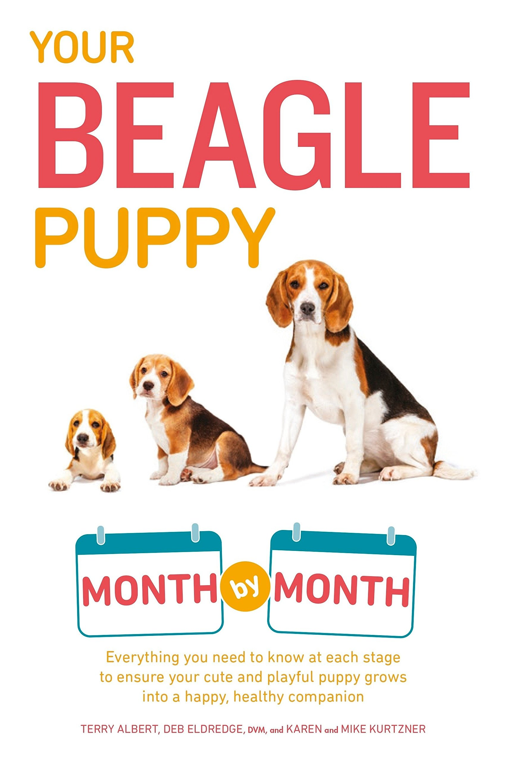 Your Beagle Puppy Month by Month: Everything You Need to Know at Each State to Ensure Your Cute and Playful Puppy (Your…