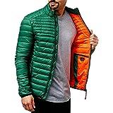 Indicode Islington gewatteerde jas voor heren in donsjas-look met opstaande kraag, gevoerde sportieve overgangsjas, moderne,
