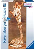 Ravensburger 15115 - Giraffe: The First Kiss - 1000 Teile Panorama Puzzle