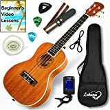 Ukulele Concert Size Bundle By Lohanu (LU-C) All Accessories Included – 2 Strap Pins Installed Nylon Strap Padded Case…