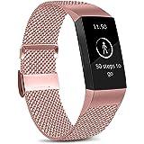 Amzpas Kompatibel med Fitbit Charge 3 rem/Fitbit Charge 4 rem, justerbar nätslinga rostfritt stål metallrem armband med unikt
