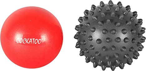 Cockatoo Hot & Cold Therapy Kit; Exercise Ball