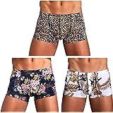 Arjen Kroos Men's Sexy Hipster Silky Boxer Briefs Trunks Underwear