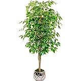 Maia Shop - Arbre artificiel avec cannes vertes pour décoration de maison, Ficus, Hauteur 150 cm