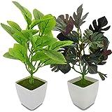 YOLETO Lot de 2 Plantes Artificielles Automne Décoration D'intérieur, Plantes en Plastique à Feuilles Vertes en Pots, Petite