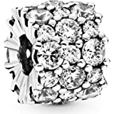 Pandora Femme Argent Charms et perles 798487C01