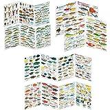 Fischfaltblatt Fischbestimmungskarte Faltblatt zur Fischbestimmung Mittelmeer, Süßwasser, Rotes Meer